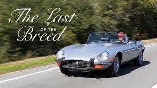 Jaguar E-Type: The Last of the Breed - Petrolicious