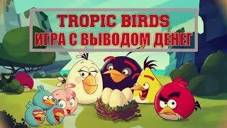 ОБЗОР TROPIC BIRDS! ИГРА С ВЫВОДОМ ДЕНЕГ! БЕЗ БАЛЛОВ 2018