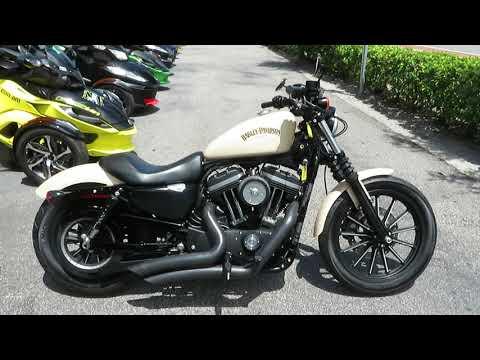 2015 Harley-Davidson Iron 883™ in Sanford, Florida - Video 1