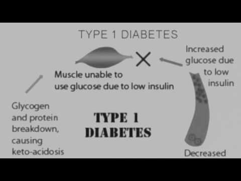 Vklad glukózy a inzulínu