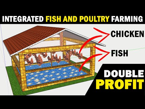 , title : 'Integrated Fish and Poultry Farming / Integrated Fish and Layer Chicken Farming