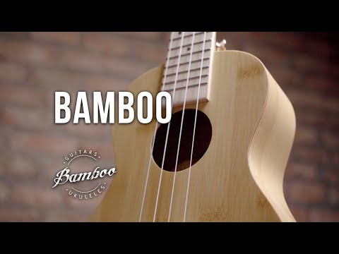 BAMBOO Concert Ukulele Classic Series | Electro Acoustic with EQ | For Beginners and Professionals | Bamboo Wood | With Gig Bag (Special Edition)