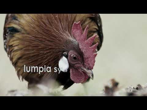 """""""80'"""" - Juan Paasa (lyric video)"""