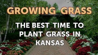 The Best Time to Plant Grass in Kansas