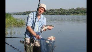 Рыбалка на левашовском пруду под серпуховым