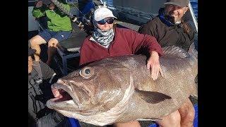 Великий поймать рыбу в водах России