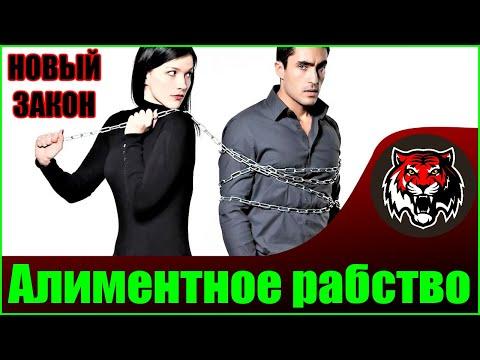 Закон об Алиментах на жилье | Алиментное рабство в России