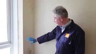 How to treat mould and prevent it in the future - Video Youtube