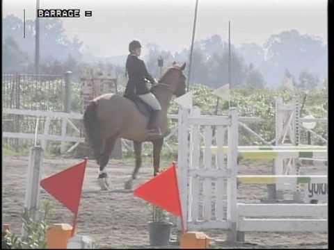La ragazza sotto lattivatore di cavallo per guardare