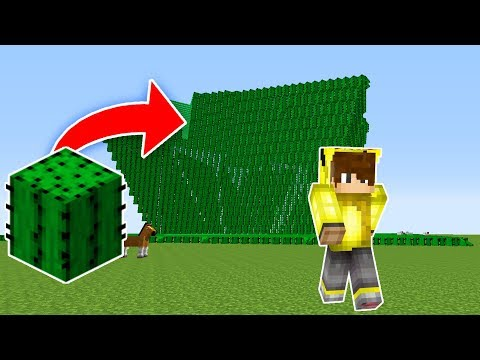 KAKTÜS TUSUNAMİ VS EV #4 - Minecraft