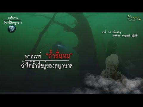 พริกไทยสารละลายของราคาจุดเม็ดสี