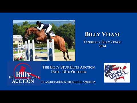 Billy Vitani