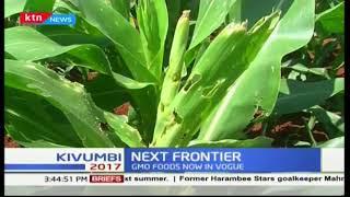 Next frontier: GMO foods now in vogue