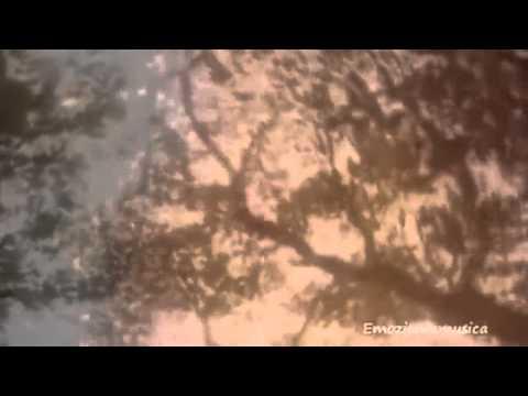 Displasia dellanca in video neonati