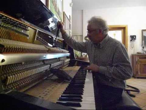 Virtuosa accordatura piano verticale