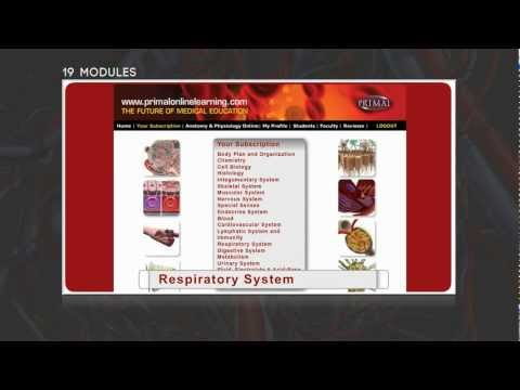 Anatomy and Physiology Online - Primal Online Learning