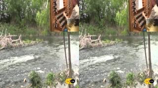 preview picture of video 'Sanfer SFH- San Fernando de Henares- Imágenes del Río Jarama en 3D'