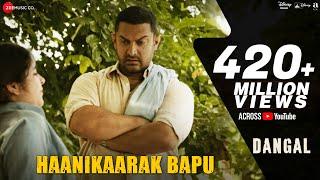 Haanikaarak Bapu  Aamir Khan