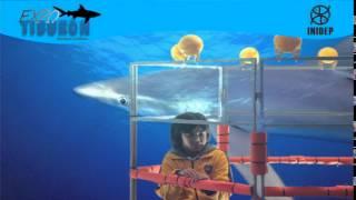 DIA 2 Expo Tiburon104