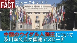 ニュース中国のウイグル人弾圧について及川幸久氏が国連でスピーチザ・ファクト20180824