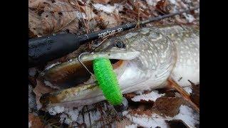 Как правильно ловить щуку в декабре