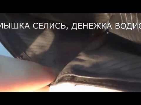 Книга тимошенко астрология профессия предназначение
