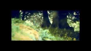 Christina Aguilera - Lotus (official video)