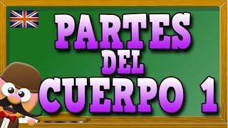 PARTES DEL CUERPO 1 EN INGLÉS - INGLÉS PARA NIÑOS CON MR PEA [ENGLISH FOR KIDS]