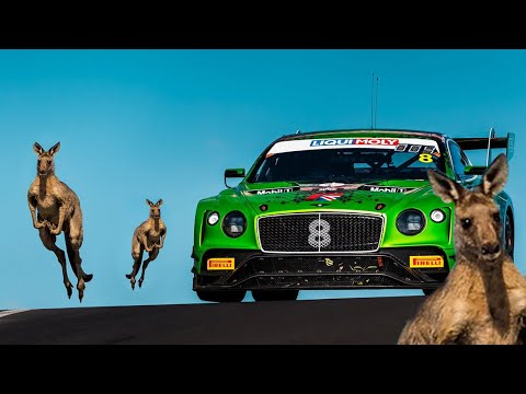 Video: V8 Supercars Vs Kangaroos