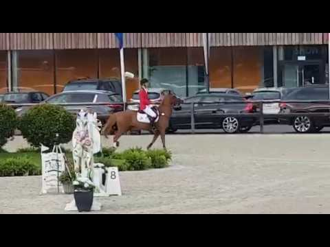 Kamirez van Orchid's & Gilles Nuytens FEI Nations Cup Final Youth round 1