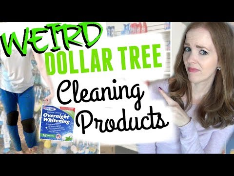 WEIRD DOLLAR TREE CLEANING PRODUCTS! | Dollar Tree Cleaning Hacks!