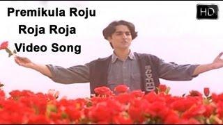 Roja Roja Song Lyrics - Premikula Roju