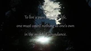 Devotion - David Modica Music - Buddha Quotes