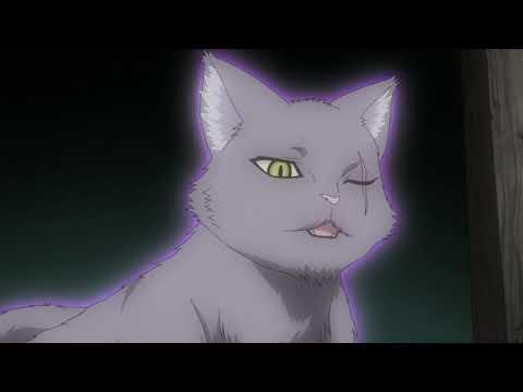 Богиня-кошка из Яойорозу [сейнен, комедия, повс-сть]  Марафон   Все серии подряд  Trina D
