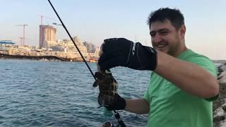Рыбалка в израиле на средиземном море с берега