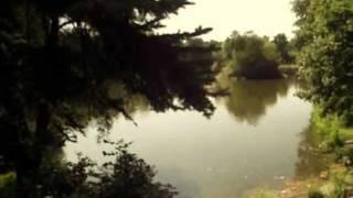 preview picture of video 'Non so piu' chi sei (PUPO) - Niedziela w parku Piłsudskiego - Lodz Poland'
