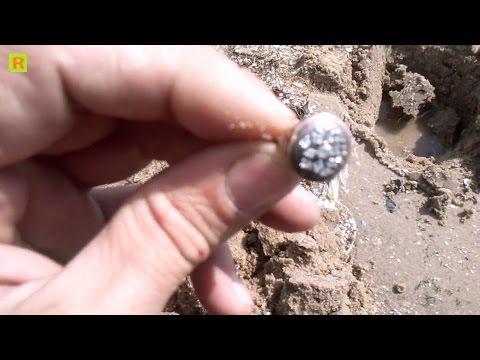 Поиск на пляже золото-брильянты кладоискатель