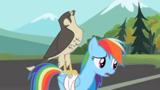 My little pony friendship is magic: May The Best Pet Win
