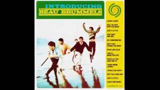 The Beau Brummels - 03 Just a Little (HQ)