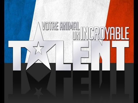 comment participer a incroyable talent 2013