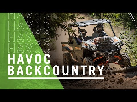 2019 Arctic Cat Havoc Backcountry Edition in Tully, New York - Video 1