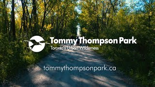 Tommy Thompson Park - Toronto's Urban Wilderness
