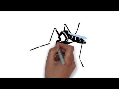 Video Demam Berdarah, dijelaskan secara asyik dan mudah dimengerti