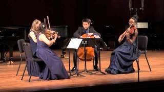 Grieg: String Quartet in G minor, Op. 27, Movement I, Un poco andante - Allegro molto ed agitato