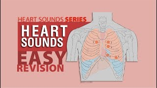 Complete Heart Sounds In 7 minutes - with Heart Sounds Audio