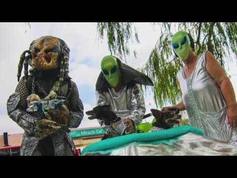 Sneak peek: Brand new attractions to debut at Roswell's UFO Festival