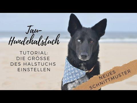 Tau-Hundehalstuch nähen ‖ Neues Schnittmuster