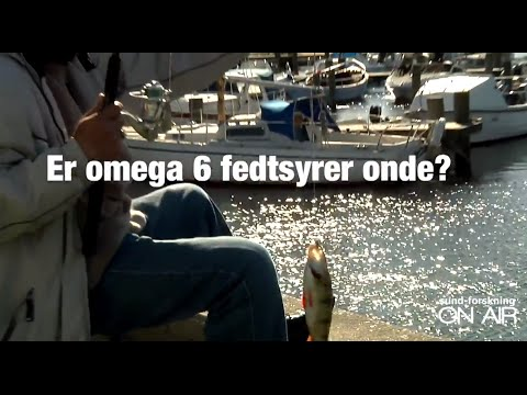 Umahro - Er omega 6 fedtsyrer onde?