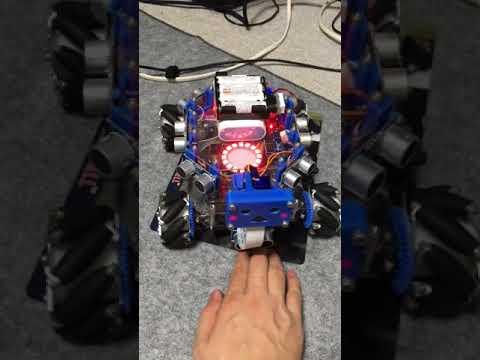 Mecanum Wheel robot pet | RobotShop Community
