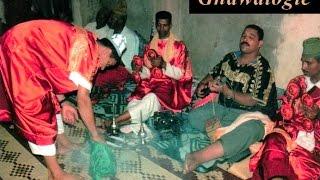 Gnawalogie 'Officiel'_Lila Maàlem Koyou -- LBalini-- Gnawalogie Marrakech